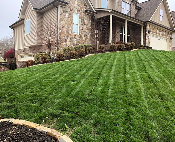 Landscaping-Services-01